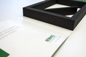 Schaumstoffbox